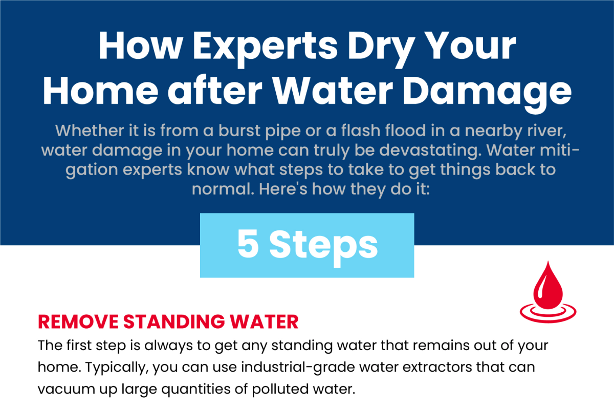 How Experts Dry Your Home after Water Damage