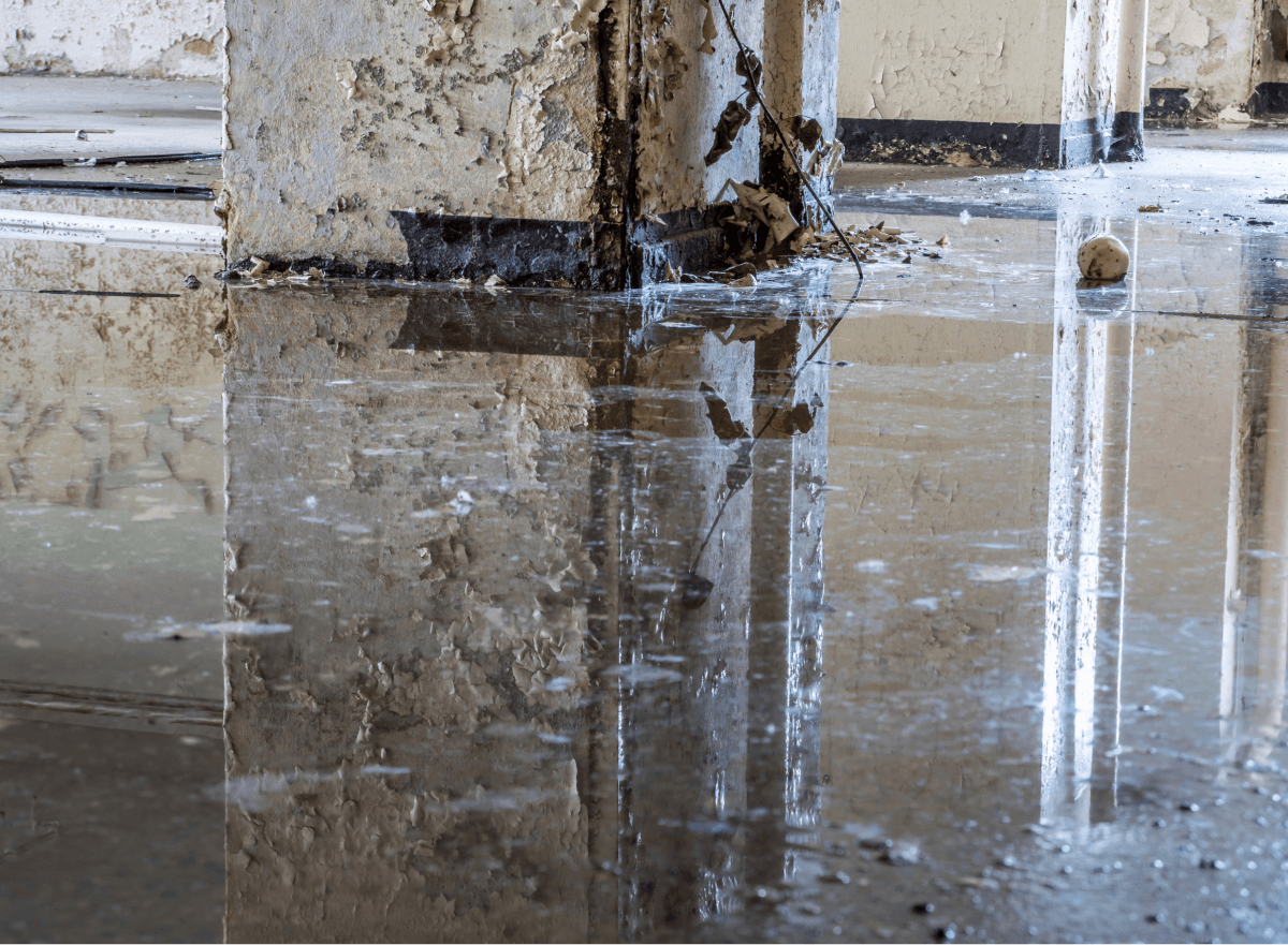 Water Removal Overland Park KS